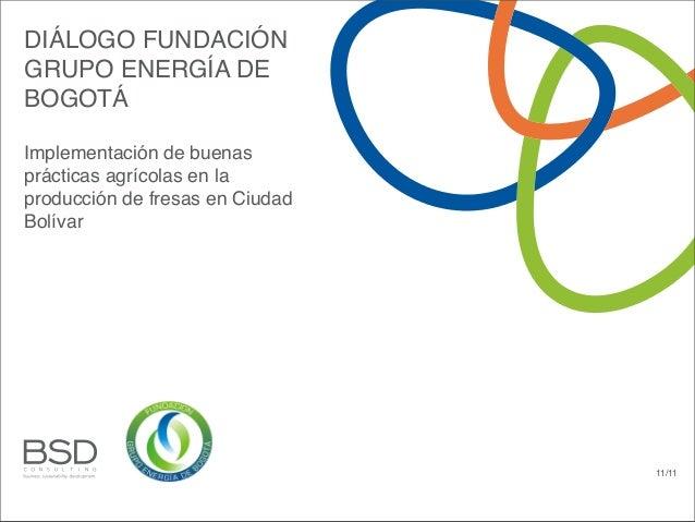 DIÁLOGO FUNDACIÓNGRUPO ENERGÍA DEBOGOTÁImplementación de buenasprácticas agrícolas en laproducción de fresas en CiudadBolí...