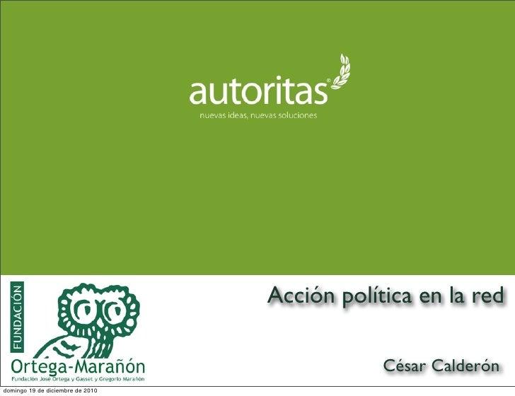 Accion Politica en la red. Fundacion Ortega y Gasset