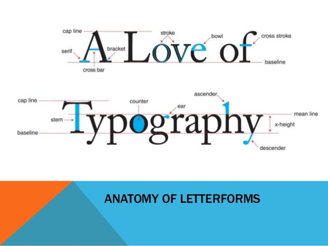 Fundamental Of Typography
