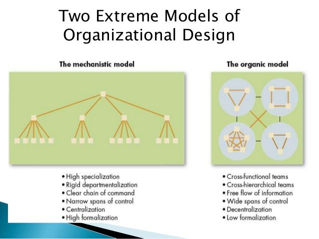 narrow organizational structure
