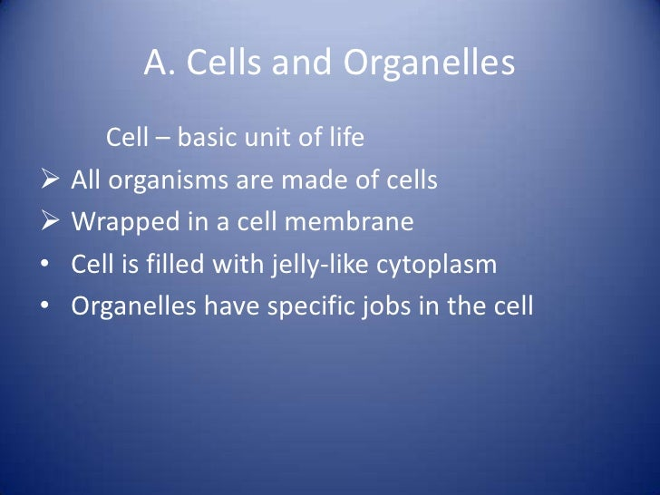 fundamentals of biology Course, year & sem, title, instructor(s), download biol 105x, 2007-03, fundamentals of biology i, mulder, kind, pdf biol 105, 2006-03, fundamentals of biology i, wagner, dobrien, jones, pdf biol 105l, 2006-03, fundamentals of biology i, wagner, dobrien, jones, pdf biol 105, 2005-03, fundamentals of biology i.