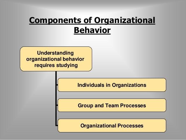 Components of Organizational  Behavior  Understanding  organizational behavior  requires studying  Individuals in Organiza...