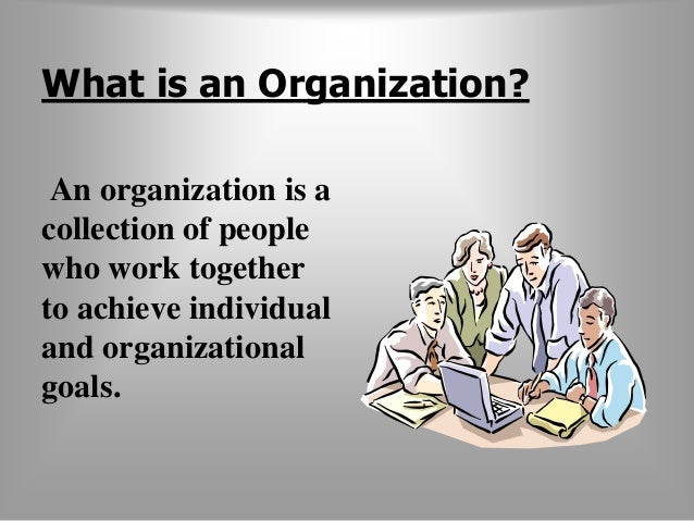 What is an Organization?  An organization is a  collection of people  who work together  to achieve individual  and organi...