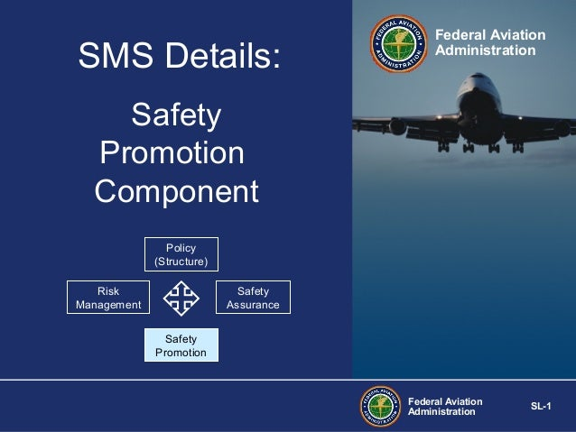 SMS Details:  Federal Aviation Administration  Safety Promotion Component Policy (Structure) Risk Management  Safety Assur...