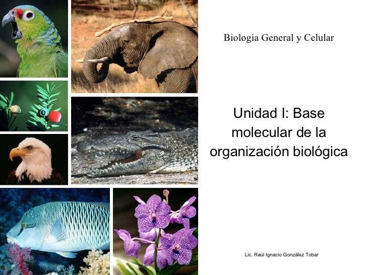 Biología General y Celular Unidad I: Base molecular de la organización biológica Lic. Raúl Ignacio González Tobar