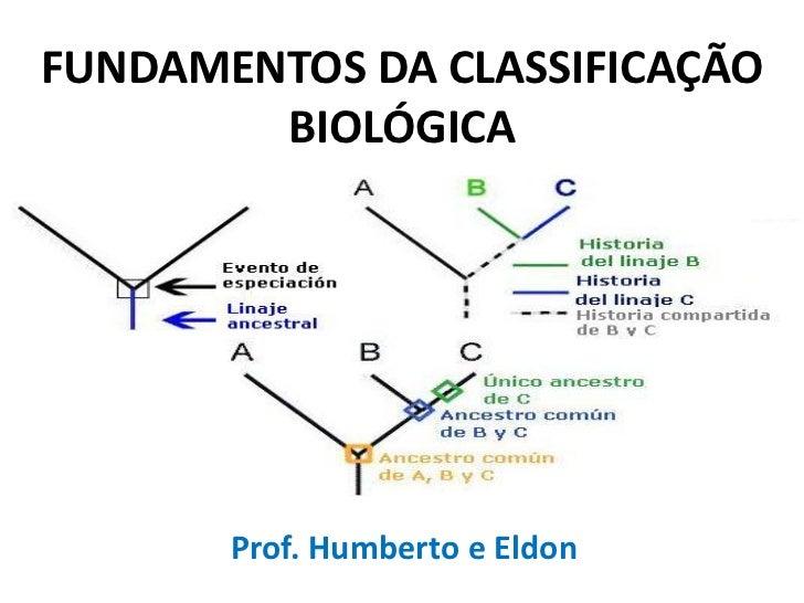 FUNDAMENTOS DA CLASSIFICAÇÃO        BIOLÓGICA       Prof. Humberto e Eldon