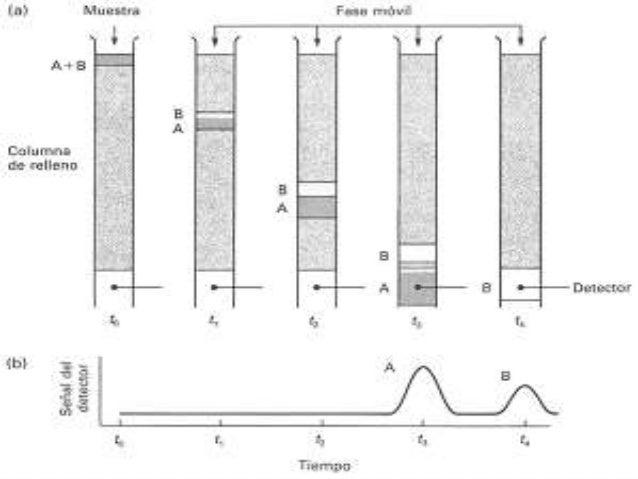  El aislamiento de las especies separadas se logra pasando una cantidad suficiente de fase móvil a través de la columna p...