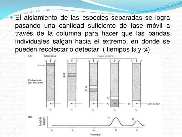  Si durante la elución se coloca en el extremo de la columna un detector que responda a la concentración del soluto y se ...