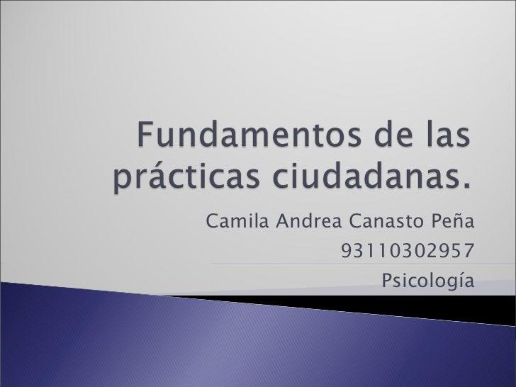 Camila Andrea Canasto Peña 93110302957 Psicología