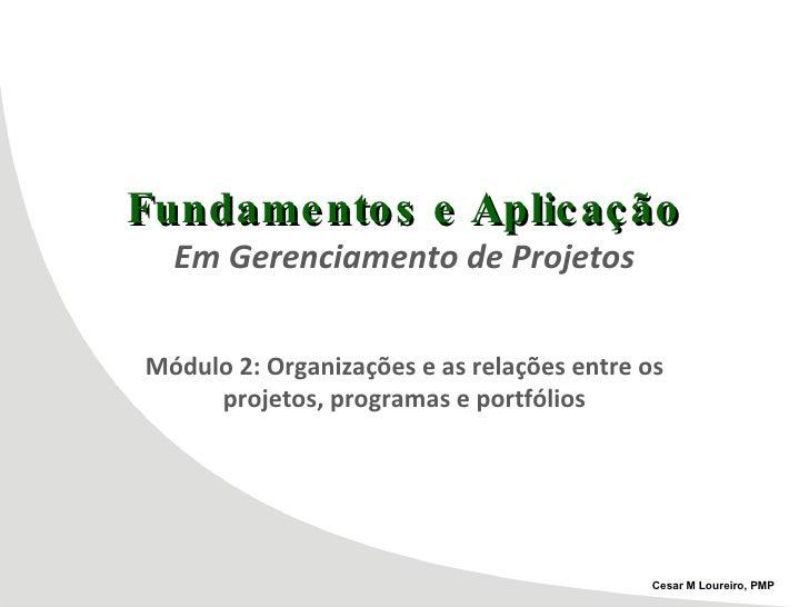 Fundamentos e Aplicação Em Gerenciamento de Projetos Módulo 2: Organizações e as relações entre os projetos, programas e p...