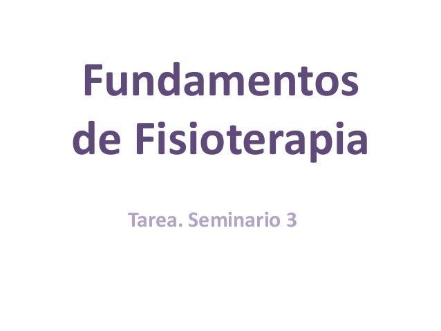 Fundamentos de Fisioterapia Tarea. Seminario 3