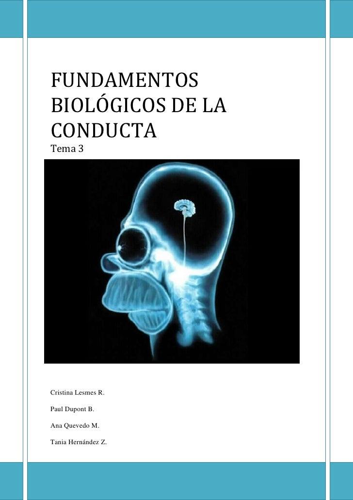 FUNDAMENTOSBIOLÓGICOS DE LACONDUCTATema 3Cristina Lesmes R.Paul Dupont B.Ana Quevedo M.Tania Hernández Z.