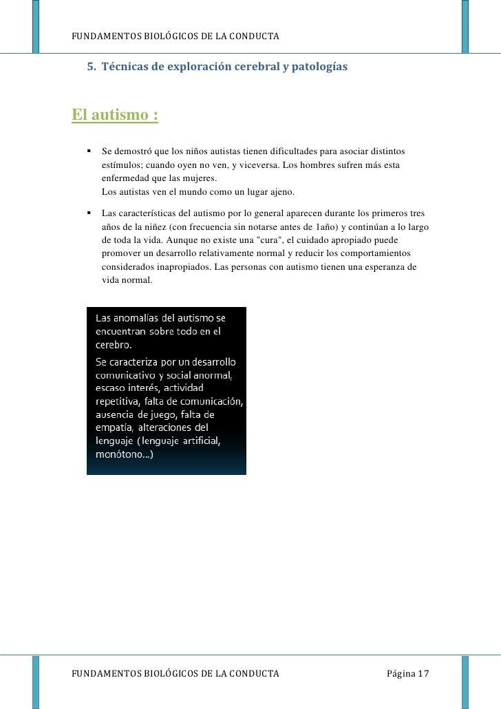 FUNDAMENTOS BIOLÓGICOS DE LA CONDUCTA  5. Técnicas de exploración cerebral y patologíasEl autismo :     Se demostró que l...