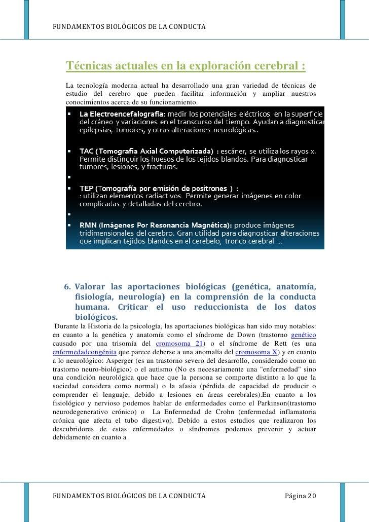 FUNDAMENTOS BIOLÓGICOS DE LA CONDUCTA    Técnicas actuales en la exploración cerebral :    La tecnología moderna actual ha...