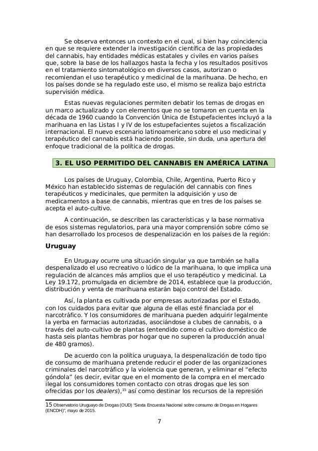 Fundamentos para la despenalización del cannabis en Bolivia