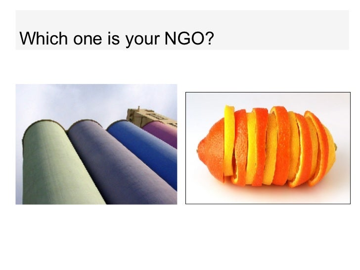 Which one is your NGO?