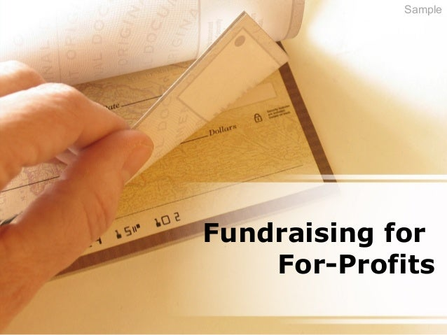 Fundraising for For-Profits Sample