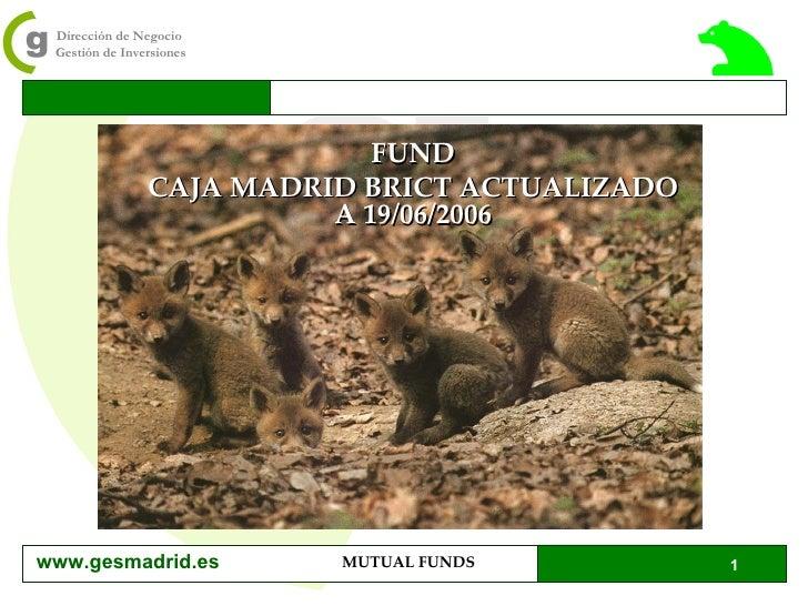 FUND CAJA MADRID BRICT ACTUALIZADO A 19/06/2006 www.gesmadrid.es