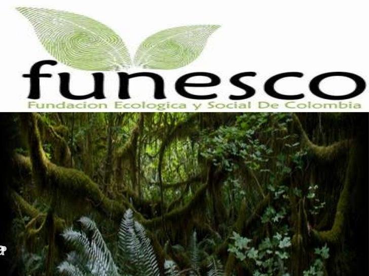 •Fundaciónecológica y social de Colombia <br />Fundaciónecológica y social de Colombia • <br />
