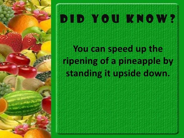 biwa fruit fun fruit facts
