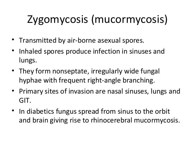 Fungal infections in histopathology