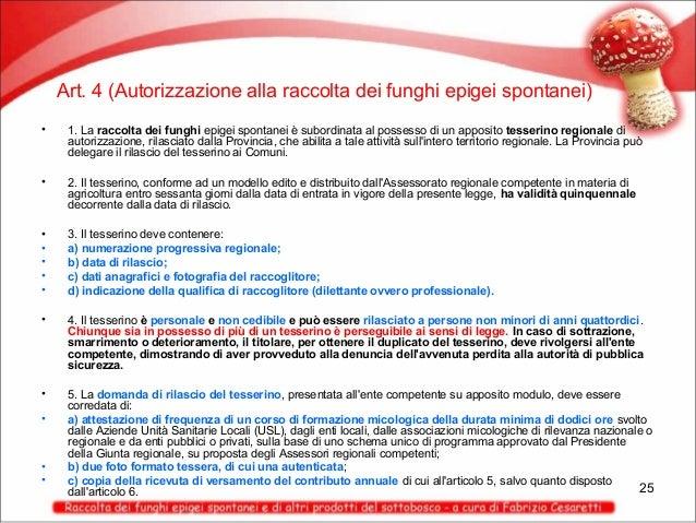 Art. 4 (Autorizzazione alla raccolta dei funghi epigei spontanei) •  1. La raccolta dei funghi epigei spontanei è subordin...