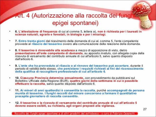 Art. 4 (Autorizzazione alla raccolta dei funghi epigei spontanei) •  6. L'attestazione di frequenza di cui al comma 5, let...