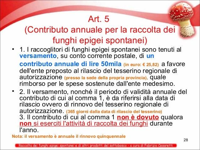 Art. 5 (Contributo annuale per la raccolta dei funghi epigei spontanei) • 1. I raccoglitori di funghi epigei spontanei son...