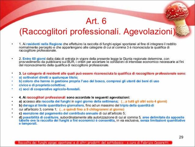 Art. 6 (Raccoglitori professionali. Agevolazioni) •  1. Ai residenti nella Regione che effettuino la raccolta di funghi ep...