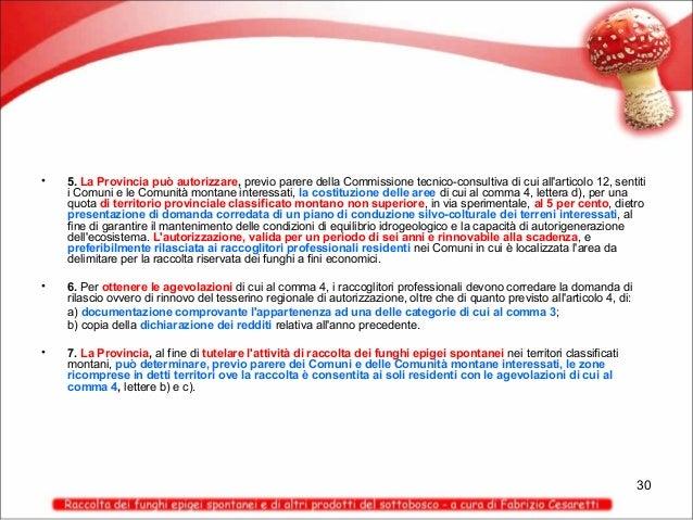 •  5. La Provincia può autorizzare, previo parere della Commissione tecnico-consultiva di cui all'articolo 12, sentiti i C...