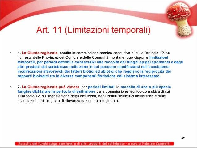 Art. 11 (Limitazioni temporali) •  1. La Giunta regionale, sentita la commissione tecnico-consultiva di cui all'articolo 1...