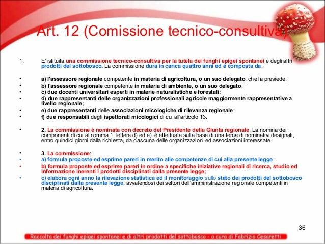 Art. 12 (Comissione tecnico-consultiva) 1.  E' istituita una commissione tecnico-consultiva per la tutela dei funghi epige...