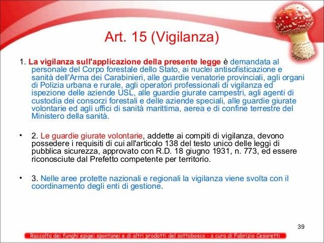 Art. 15 (Vigilanza) 1. La vigilanza sull'applicazione della presente legge è demandata al personale del Corpo forestale de...