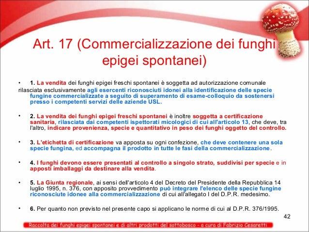 Art. 17 (Commercializzazione dei funghi epigei spontanei) • 1. La vendita dei funghi epigei freschi spontanei è soggetta a...