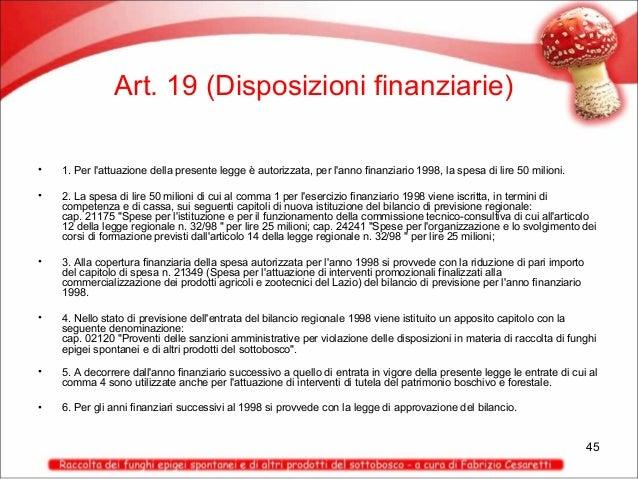 Art. 19 (Disposizioni finanziarie) •  1. Per l'attuazione della presente legge è autorizzata, per l'anno finanziario 1998,...
