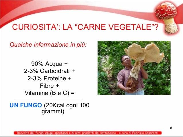 "CURIOSITA': LA ""CARNE VEGETALE""? Qualche informazione in più: 90% Acqua + 2-3% Carboidrati + 2-3% Proteine + Fibre + Vitam..."