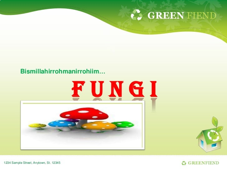 GREEN FIEND           Bismillahirrohmanirrohiim…                                         FUNGI1234 Sample Street, Anytown,...