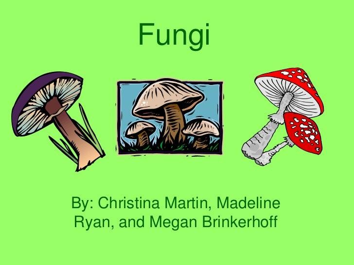 FungiBy: Christina Martin, MadelineRyan, and Megan Brinkerhoff