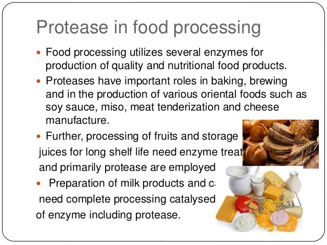 the industrial application of enzymes essay The use of enzymes in the pulp and paper industry was introduced in the 1986  however, their use has been relatively minor this prospective study aims at.