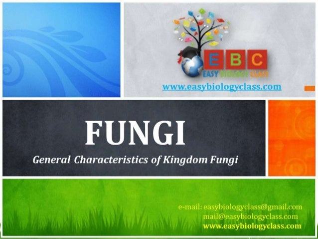 Fungi PPT (General Characteristics) by Easybiologyclass