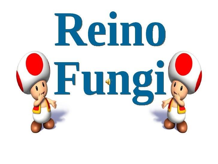 Micologia:Estudo dos    fungos.    Micoses: Doenças    causadas por fungos.g   Eucariontes.u   Heterótrofos.u   Podem ser ...