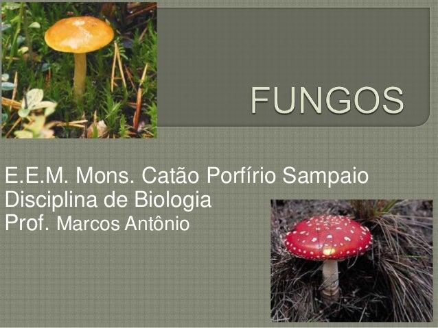 E.E.M. Mons. Catão Porfírio SampaioDisciplina de BiologiaProf. Marcos Antônio