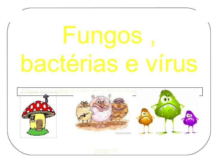 Fungos , bactérias e vírus