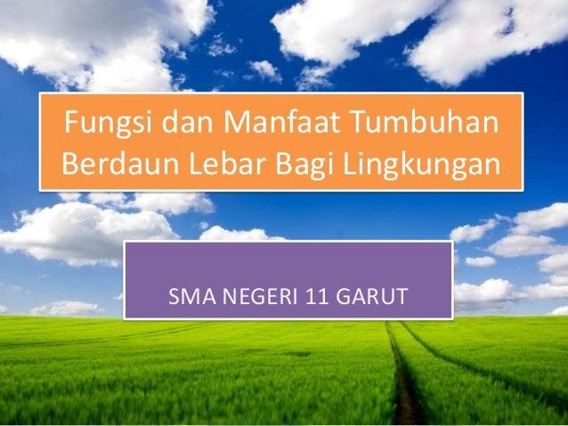 Fungsi dan Manfaat TumbuhanBerdaun Lebar Bagi Lingkungan       SMA NEGERI 11 GARUT