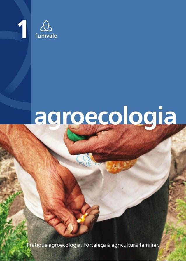agroecologiaPratique agroecologia. Fortaleça a agricultura familiar.