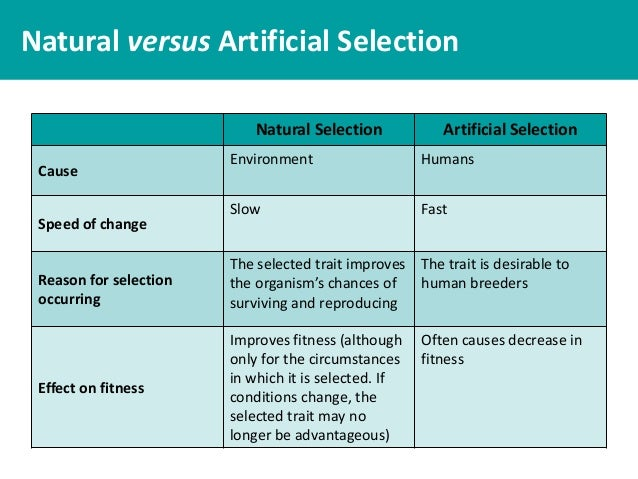 What Is Natural And Artificial Selection