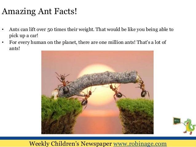 c_i _ _e_ weekly childrens newspaper wwwrobinagecom 5 amazing ant facts