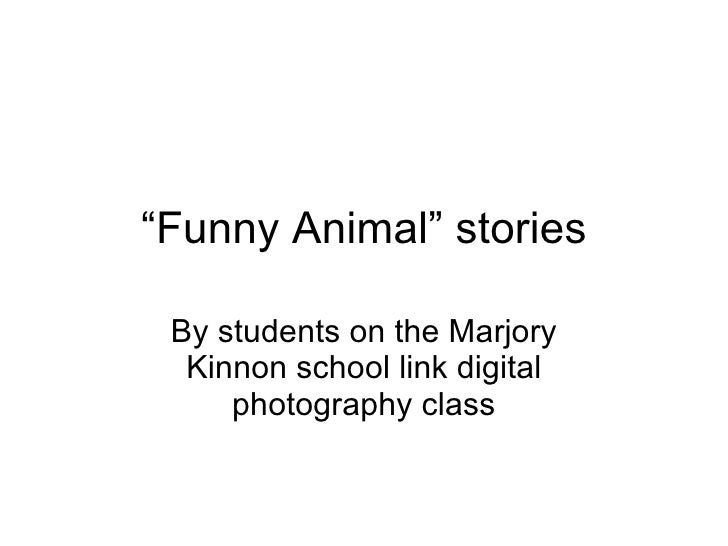 """""""Funny Animal"""" stories   By students on the Marjory   Kinnon school link digital      photography class"""
