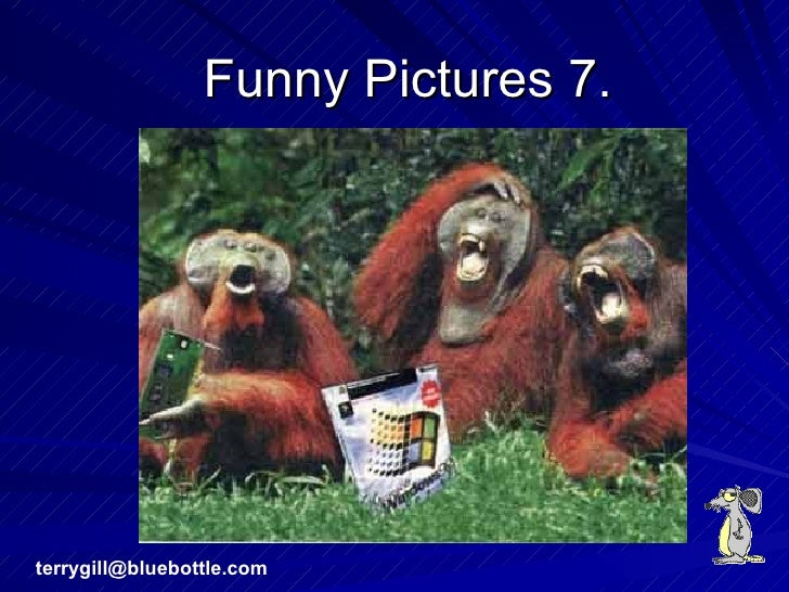 Funny Pictures 7. [email_address]