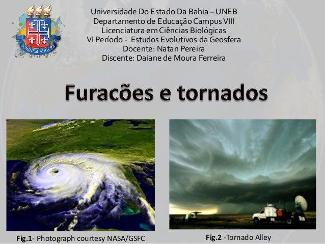 Universidade Do Estado Da Bahia – UNEB Departamento de Educação Campus VIII Licenciatura em Ciências Biológicas VI Período...
